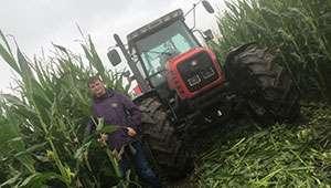 Farm's Maize Maze to celebrate 'Best of British'